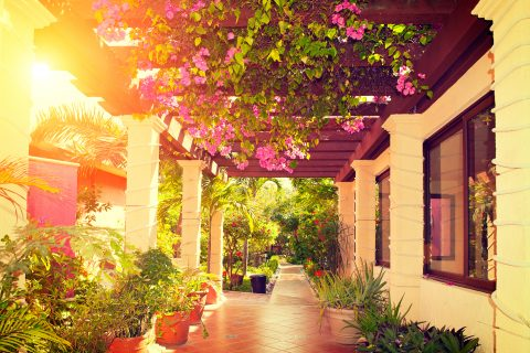 Ten Timeless Landscape Designs to Consider for Your Home's Outdoor Living Space